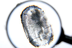 Fingerprint. Magnifier and fingerprint isolated on a white background Stock Photo
