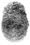 Fingerprint. Detailed fingerprint with clipping Path Stock Images