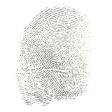 Fingerprint. Two-coloured individual fingerprint of a thumb Royalty Free Stock Photography