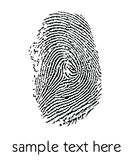 Fingerprint. On a white background Royalty Free Stock Photography