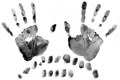 Fingerprint. A lot of black fingerprints on white paper maded on scanner Royalty Free Stock Photo