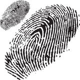 Fingerprint. An image of a fingerprint in black Royalty Free Stock Photography