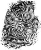 Fingerprint 14b. Fingerprint Illustration, very detailed (vector version available Stock Illustration