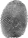Fingerprint (17). Very detailed Fingerprint,  available as EPS vector or JPG Stock Photo