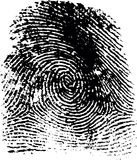 Fingerprint(19). Fingerprint illustration Vector Illustration