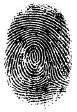 FingerPrint 2. Black and White Vector Fingerprint - Very accurately scanned and traced ( Vector is transparent so it can be overlaid on other images, vectors etc Stock Images