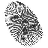 Fingerprint. A fingerprint computer generated image Stock Photo