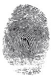 Fingerprint. Detailed black fingerprint isolated on white background Royalty Free Stock Photos