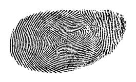 Fingerprint. Clip art illustration of fingerprint Royalty Free Stock Photo