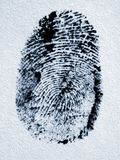 Fingerprint. Royalty Free Stock Photo