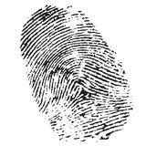 Fingerprint. Highly detailed illustration of a fingerprint Stock Photos