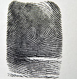 Fingerprint. Inked fingerprint rolled onto a state fingerprint card royalty free stock photography
