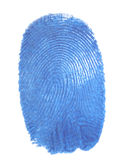 Fingerprint. Blue isolated fingerprint macro shot Royalty Free Stock Images