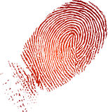 Fingerprint. Very detailed fingerprint, isolated on white background jpg, or EPS vector. Size and color can be changed Royalty Free Stock Image