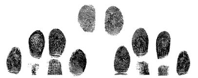 Fingerprint. Black and White Vector Fingerprint Crop Stock Images