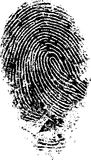 FingerPrint 4. Black and White Vector Fingerprint - Very accurately scanned and traced ( Vector is transparent so it can be overlaid on other images, vectors etc Royalty Free Stock Photos