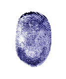 Fingerprint. Finger print Royalty Free Stock Image