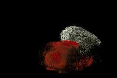 fingerprint zdjęcie royalty free