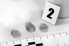 fingerprint Immagine Stock Libera da Diritti