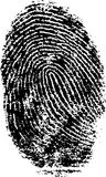 FingerPrint 5. Black and White Vector Fingerprint - Very accurately scanned and traced ( Vector is transparent so it can be overlaid on other images, vectors etc Stock Images