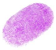 fingerprint Στοκ Φωτογραφίες