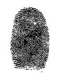 Fingerprint. Highly detailed  illustration of a fingerprint Royalty Free Stock Photo