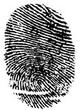 Fingerprint. Isolated fingerprint on white background Royalty Free Stock Photo