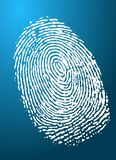 Fingerprint. Image of a fingerprint to represent internet security Royalty Free Stock Image