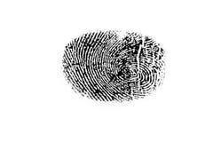Fingerprint. Isolated fingerprint on white background Stock Images