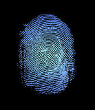 Fingerprint. Detailed image of an index fingerprint Royalty Free Stock Image