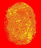 Fingerprint. Detailed image of an index fingerprint Stock Photography