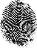 FingerPrint 8. Black and White Vector Fingerprint - Very accurately scanned and traced ( Vector is transparent so it can be overlaid on other images, vectors etc Royalty Free Stock Image