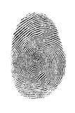 Fingerprint royalty free illustration