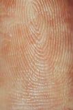 fingerprint fotografía de archivo libre de regalías