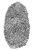 Fingerprint. On the white background Royalty Free Stock Image