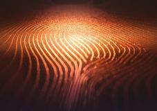 Fingerprint Binary Code Labyrinth. 3D illustration. Fingerprint in labyrinth form, with binary codes in reference to individual identity Royalty Free Stock Photography
