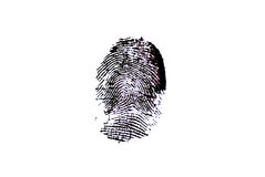 Fingerprint - black ink. Detailed fingerprint image in black and white background Royalty Free Stock Photo