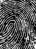 FingerPrint Crop 4. Black and White Vector Fingerprint Crop - Very accurately scanned and traced ( Vector is transparent so it can be overlaid on other images Royalty Free Stock Image