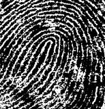 FingerPrint Crop 5. Black and White Vector Fingerprint Crop - Very accurately scanned and traced ( Vector is transparent so it can be overlaid on other images Stock Photos