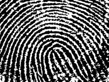 FingerPrint Crop 9. Black and White Vector Fingerprint Crop  - Low Poly Count Stock Photos