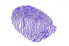 Fingerprint. 3d render of fingerprint on isolated white background Royalty Free Stock Images