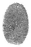 Fingerprint. Detailed real fingerprint in black and white Royalty Free Stock Photography