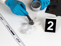Fingerprint. Disclosure of forensic evidence using fingerprint powders Royalty Free Stock Photos
