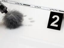 Fingerprint. Disclosure of forensic evidence using fingerprint powders Stock Photos
