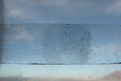 Fingerprint Royalty Free Stock Image