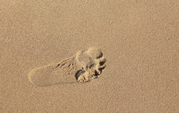 Fingerprint feet at sandy beach Royalty Free Stock Photo