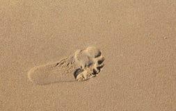 Fingerprint feet at sandy beach Royalty Free Stock Photo