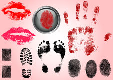 Fingerprint Footprints and Lips. Very accurately scanned and traced ( Vectors are transparent so it can be overlaid on other images, s etc Royalty Free Stock Photo