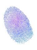 Fingerprint in gradient color. Very detailed Fingerprint in gradient color Royalty Free Stock Photos