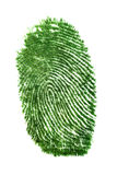 Fingerprint of grass Stock Image